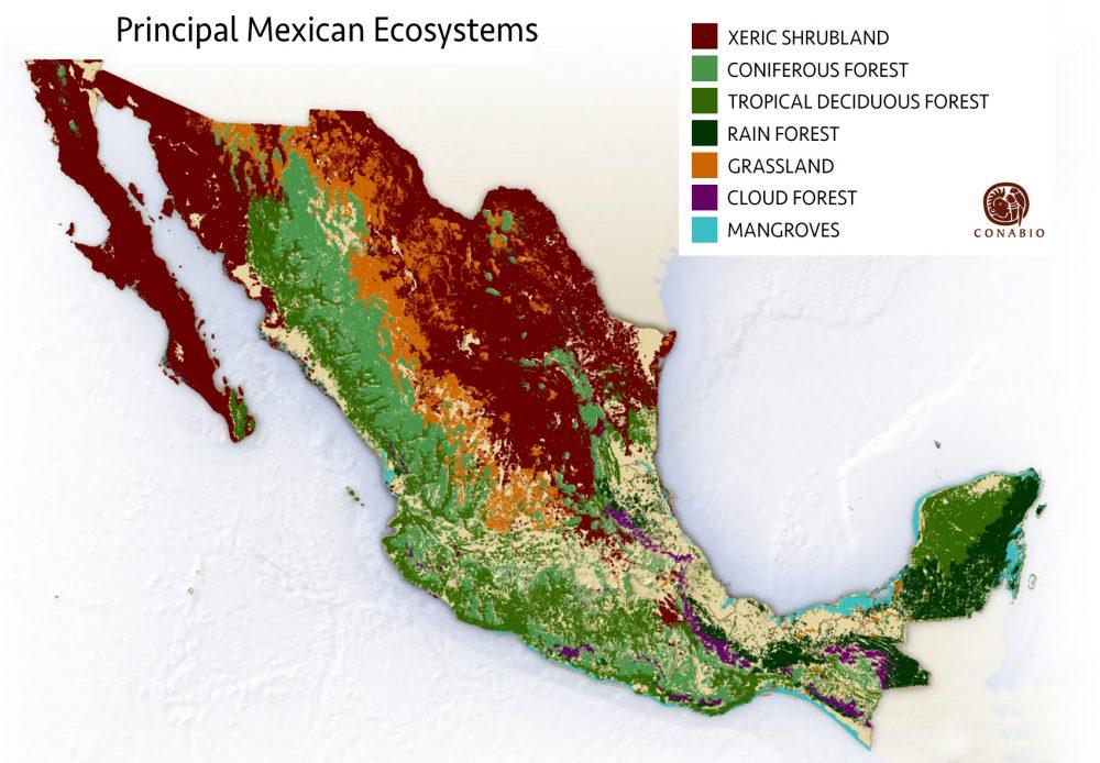 Principal ecosystems in Mexico