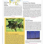 Viva Natura in the Science Magazine